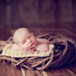 Sleep Baby 23