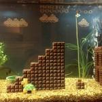 Mario Aquarium 6