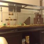 Mario Aquarium 4