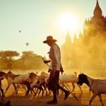Bagan Bliss