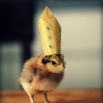 Chicks in Hats 2
