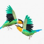 Colorful Paper Birds 2
