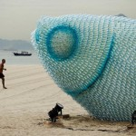 Fish from Plastic Bottles 1