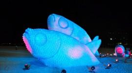 ปลายักษ์ศิลปะจากขวดน้ำพลาสติกเหลือใช้