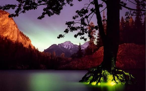 ภาพถ่ายธรรมชาติเรืองแสงสวยสมจริง