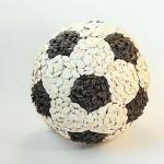 Sunflower Seeds Football