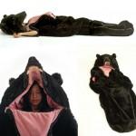 The Great Sleeping Bear