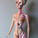 Barbie Anatomy 5