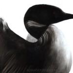 Bird Painting 4