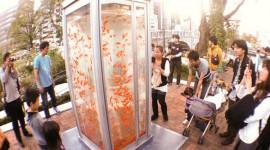 ตู้โทรศัพท์ปลา เปลี่ยนตู้เก่าให้ดูมีชีวิตชีวา