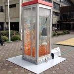 Phone Booth Aquariums 9
