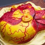 Anatomy Cake 6
