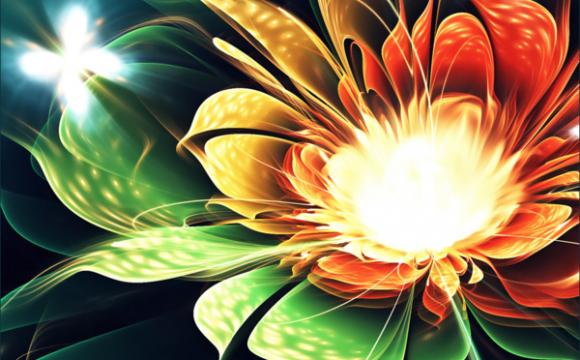 ดอกไม้ 3 มิติจากศิลปะเรขาคณิต