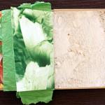 sandwichbook10