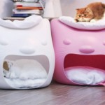 Kitty Meow Bed 3