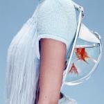 Portable Fish Bowls 3