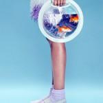 Portable Fish Bowls 4