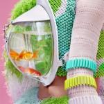 Portable Fish Bowls 6